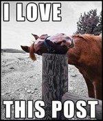 I Love this post.jpg